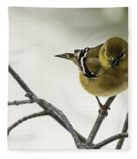 Birdy Birdy Goldfinch Fleece Blanket