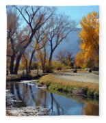 Bishop Creek Fleece Blanket