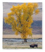 Bison And Cottonwood Fleece Blanket