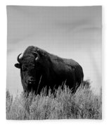 Bison Cow On An Overlook In Yellowstone National Park Black And White Fleece Blanket