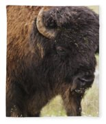 Bison From Yellowstone Fleece Blanket