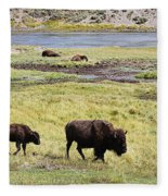 Bison Mother And Calf In Yellowstone National Park Fleece Blanket