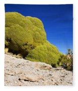 Bizarre Green Plant Bolivia Fleece Blanket
