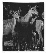Black And White Antelopes Fleece Blanket