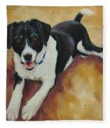 Black And White Dog Fleece Blanket