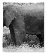 Black And White Elephant Fleece Blanket