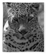 Black And White Leopard Portrait  Fleece Blanket