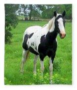 Black And White Paint Horse Fleece Blanket