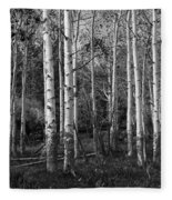 Black And White Photograph Of Birch Trees No. 0126 Fleece Blanket