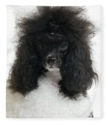 Black And White Poodle Fleece Blanket