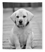 Black And White Puppy Fleece Blanket