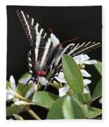 Black And White Swallowtail Square Fleece Blanket