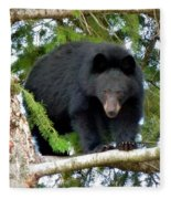 Black Bear 2 Fleece Blanket