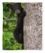 Black Bear Cub Fleece Blanket