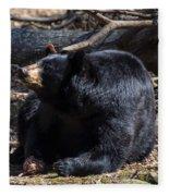 Black Bear Guarding Food Fleece Blanket