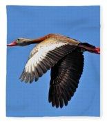 Black-bellied Whistling-duck In Flight  Fleece Blanket