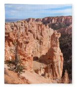 Black Birch Canyon Lookout Fleece Blanket