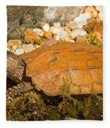 Black Breasted Leaf Turtle Fleece Blanket