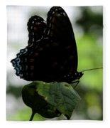 Black Butterfly Fleece Blanket