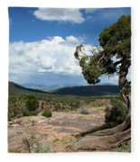 Black Canyon Juniper Fleece Blanket