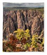 Black Canyon Spires Fleece Blanket