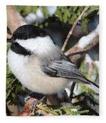 Black-capped Chickadee 9527 Fleece Blanket