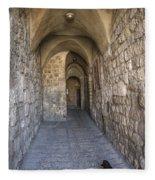 Black Cat In Jerusalem Israel Fleece Blanket