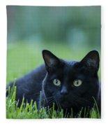 Black Cat Fleece Blanket