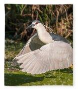 Black-crowned Night Heron Fleece Blanket