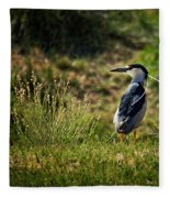 Black-crowned Night Heron At Carson Lake Wetlands Fleece Blanket