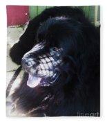 Black Dog Fleece Blanket
