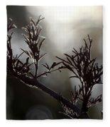 Black Edlerberry Bush Fleece Blanket