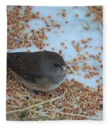 Black Eyed Junco Fleece Blanket