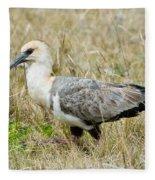 Black-faced Ibis Fleece Blanket