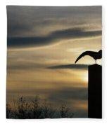 Black Headed Gull   Larus Ridibundus Fleece Blanket