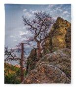 Black Hills Boulders Fleece Blanket