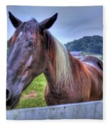 Black Horse At A Fence Fleece Blanket