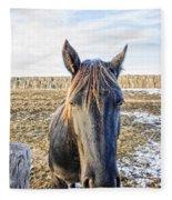Black Horse Fleece Blanket