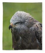 Black Kite 1 Fleece Blanket