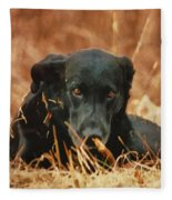 Black Labrador Fleece Blanket