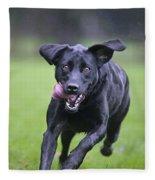 Black Labrador Running Fleece Blanket