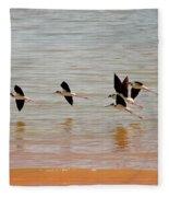 Black-necked Stilt - Lake Powell Fleece Blanket