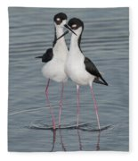 Black-necked Stilts Fleece Blanket