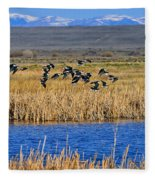 Black-necked Stilts In Flight Fleece Blanket