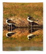 Black-necked Stilts Fleece Blanket