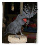 Black Palm Cockatoo Fleece Blanket