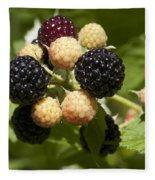 Black Raspberries Fleece Blanket