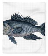 Black Sea Bass 3 Fleece Blanket