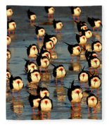 Black Skimmer Beach Fleece Blanket