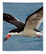 Black Skimmer In Flight Fleece Blanket